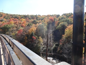 view from the Bollman Bridge on the GAP Trail