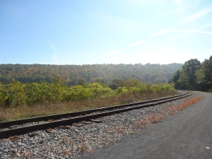 view along Helmstetters Curve on the GAP Trail