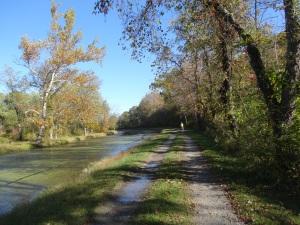 C &O Canal Path