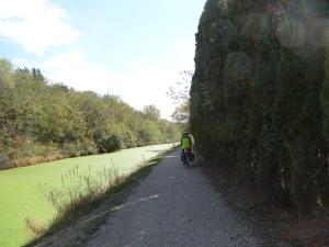 C & O Canal Path near mile marker 80