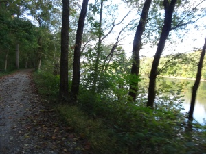 view on the C & O Canal Path near mile marker 74