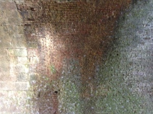 some of the 6 million bricks in the Paw Paw Tunnel