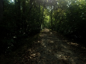 C & O Canal Path near Killiansburg Cave mile 75.2