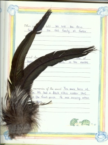 """tail feathers from the """"farm crier"""""""